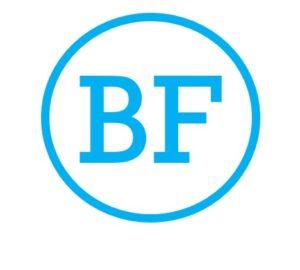 BrizFeel Logo