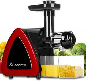 1. Aobosi Slow Masticating Juicer Review – Best Masticating Juicer for Celery Juice by Brizfeel